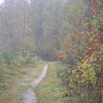 Rustige natuur foto's