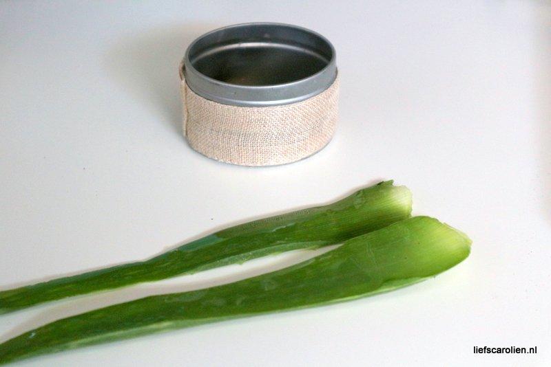 aloe vera plant voordelen creme gel zelf maken sap